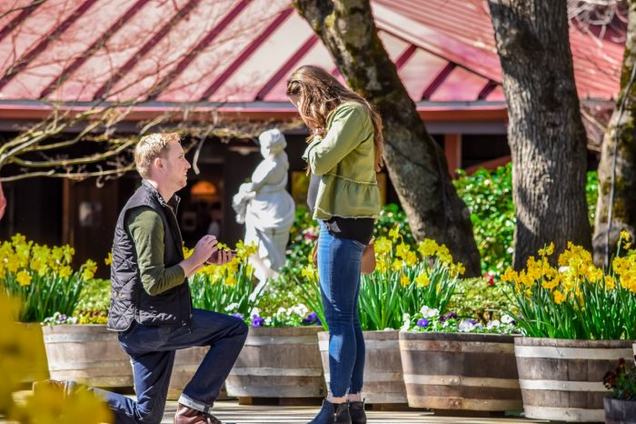 Engagement Proposal Ideas in Ironstone Vineyards