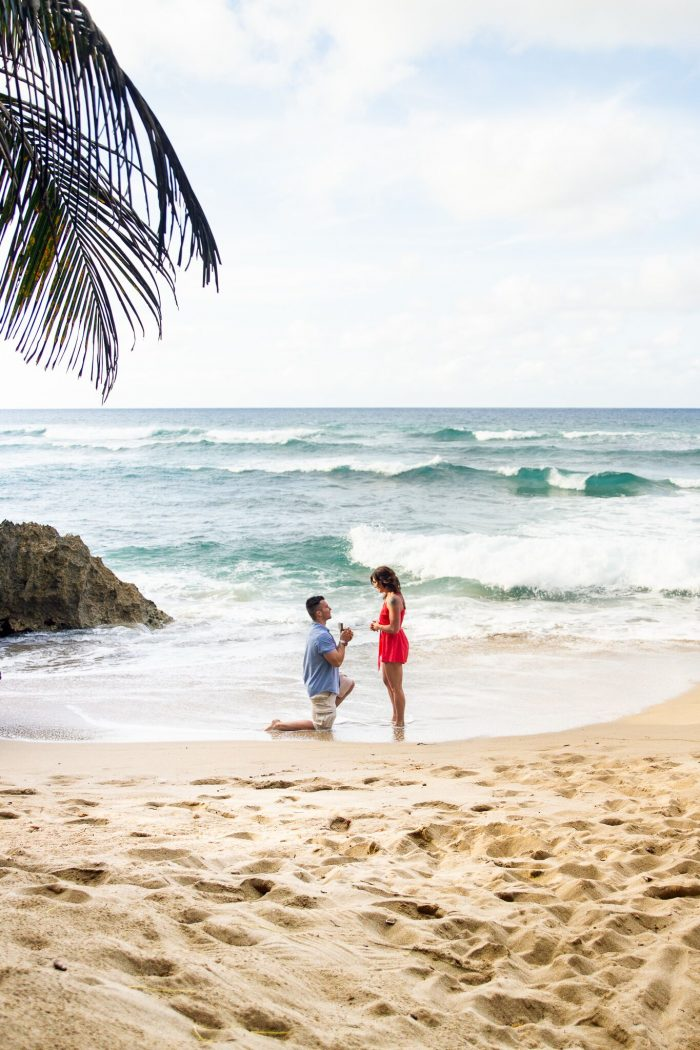 Wedding Proposal Ideas in Dominican Republic