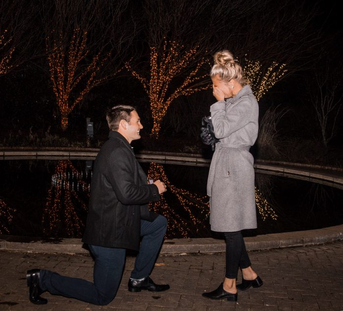 Marriage Proposal Ideas in Daniel Stowe Bantanical Gardens
