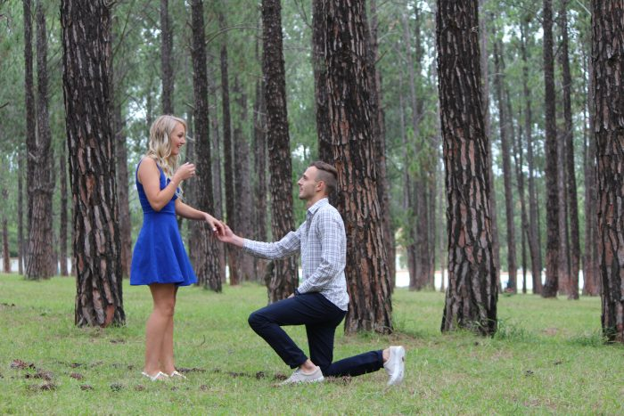 Marriage Proposal Ideas in In a forest
