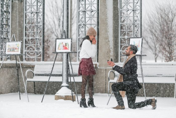 Wedding Proposal Ideas in Chicago