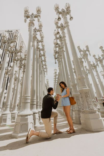 Engagement Proposal Ideas in Los Angeles County Museum of Art