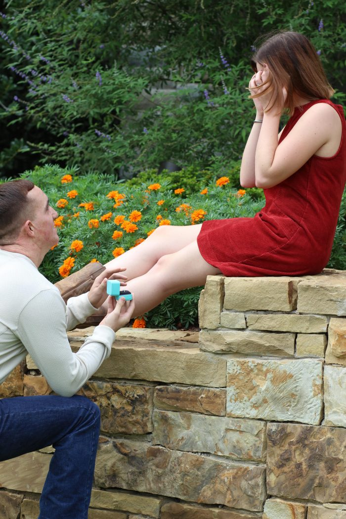 Proposal Ideas Dallas Arboretum