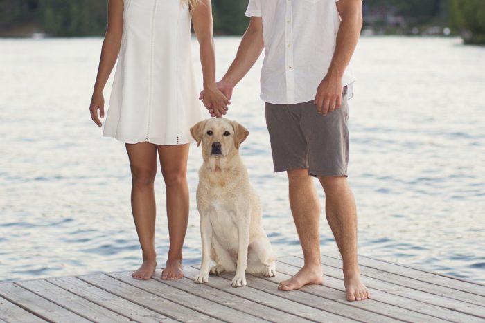 Wedding Proposal Ideas in Wisconsin