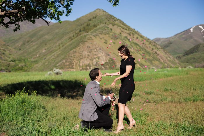 Engagement Proposal Ideas in Vivian Park, Utah