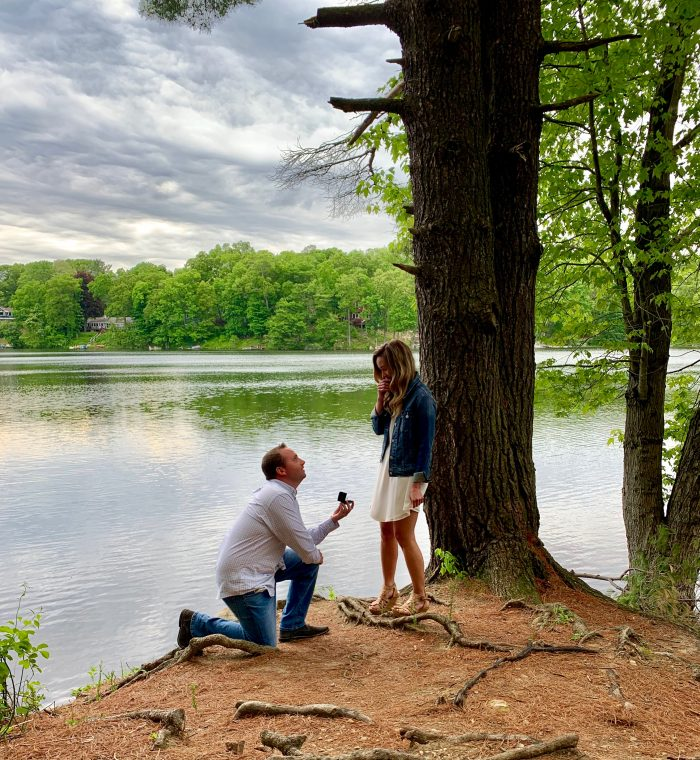 Marriage Proposal Ideas in Panther Lake