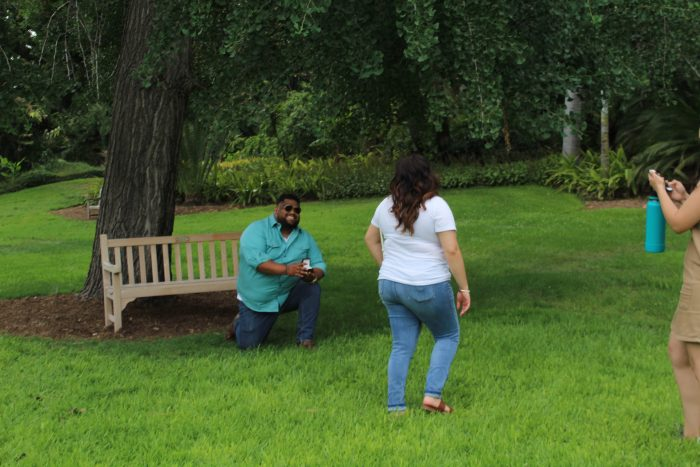 Engagement Proposal Ideas in The Huntington Library, Art Collections, and Botanical Gardens