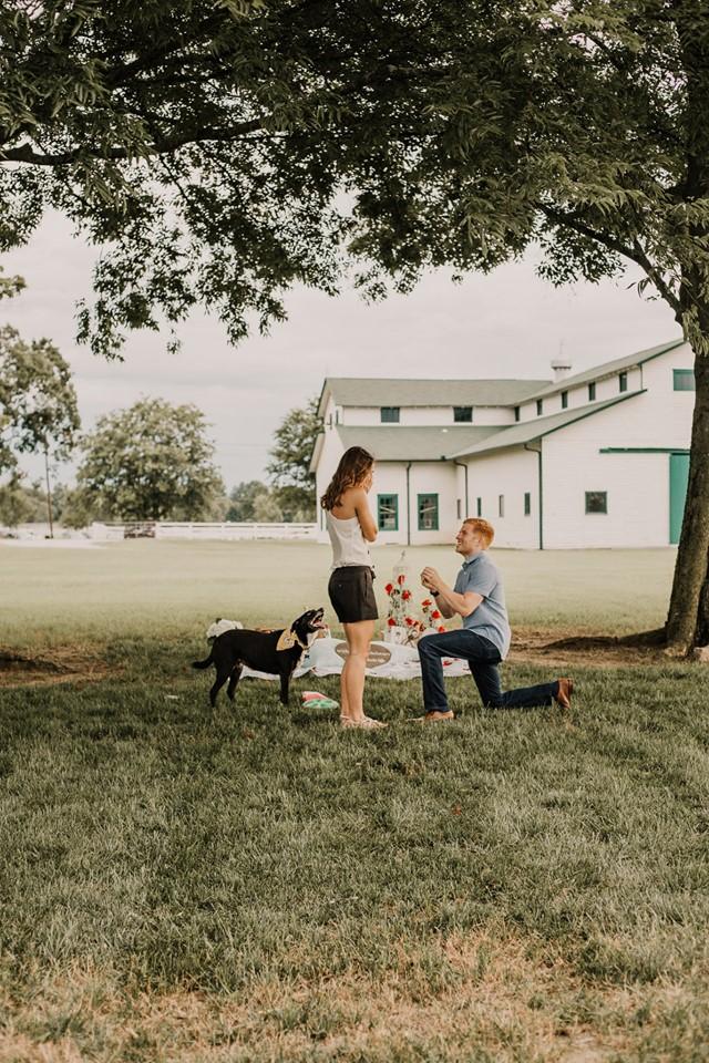 Wedding Proposal Ideas in Harlinsdale Farm in Franklin, TN