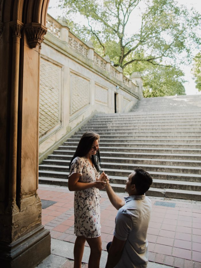 Proposal Ideas Central Park, NY