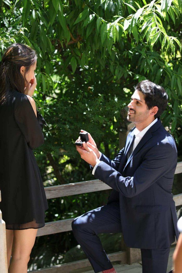 Wedding Proposal Ideas in Huntington Gardens