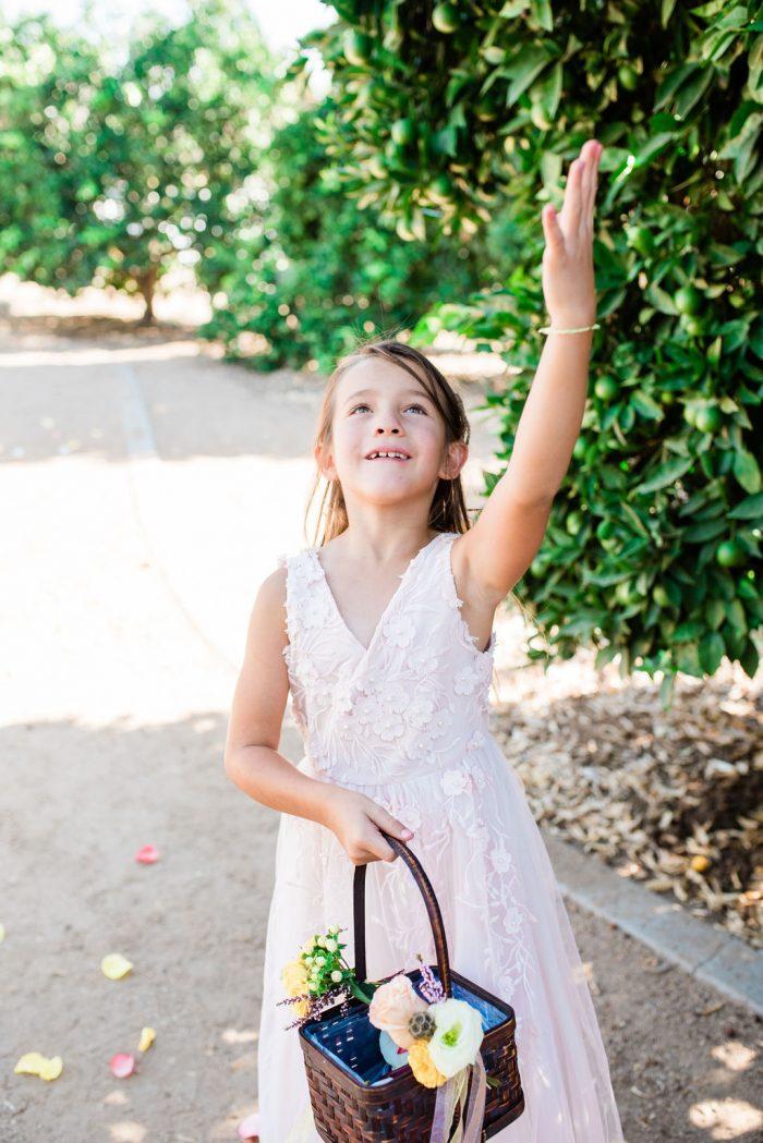 Proposal Ideas California Citrus State Historic Park