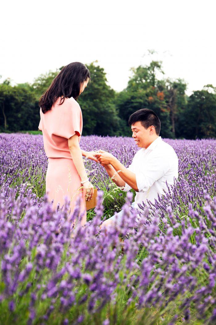 Engagement Proposal Ideas in Mayfield Lavender Farm, London, United Kingdom