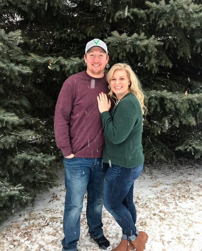 Lisa and Michael's Engagement in La Crosse Wisconsin