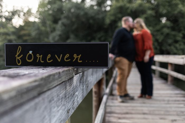 Engagement Proposal Ideas in Hungry Mother State Park (lake amphitheatre)