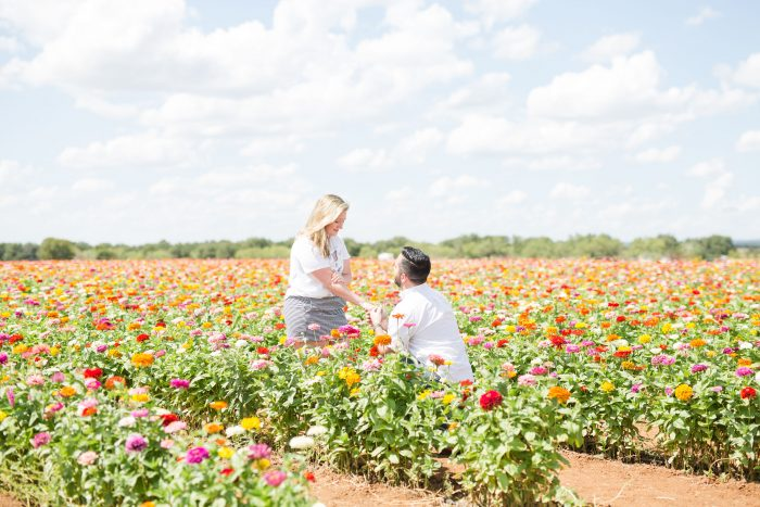 Proposal Ideas Fredericksburg TX