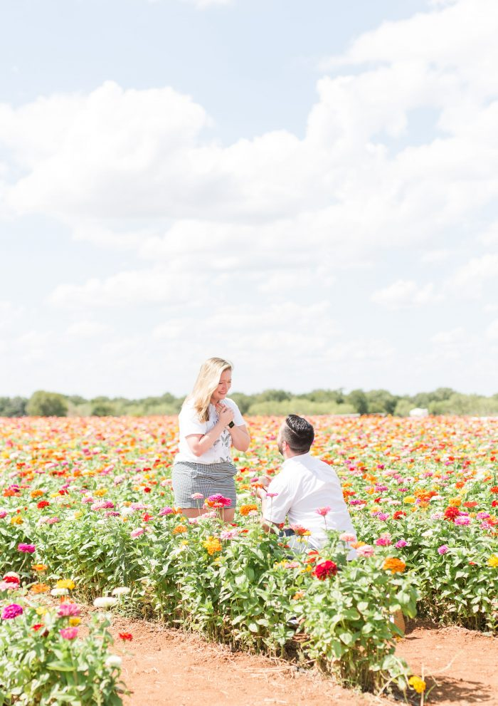 Meaghan's Proposal in Fredericksburg TX