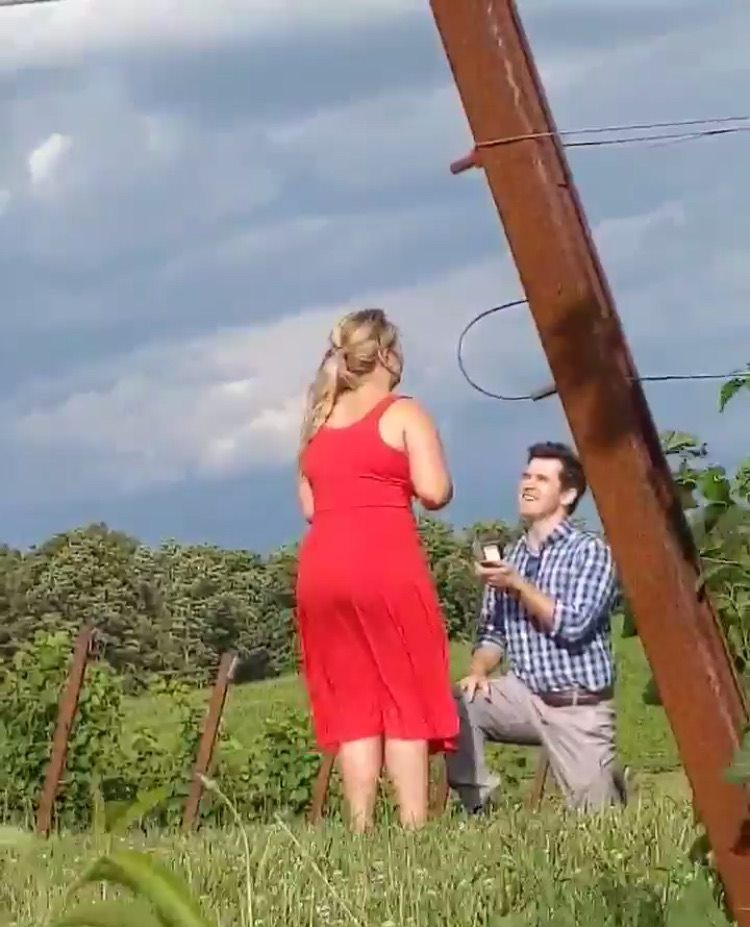 Where to Propose in Black Ankle Vinery