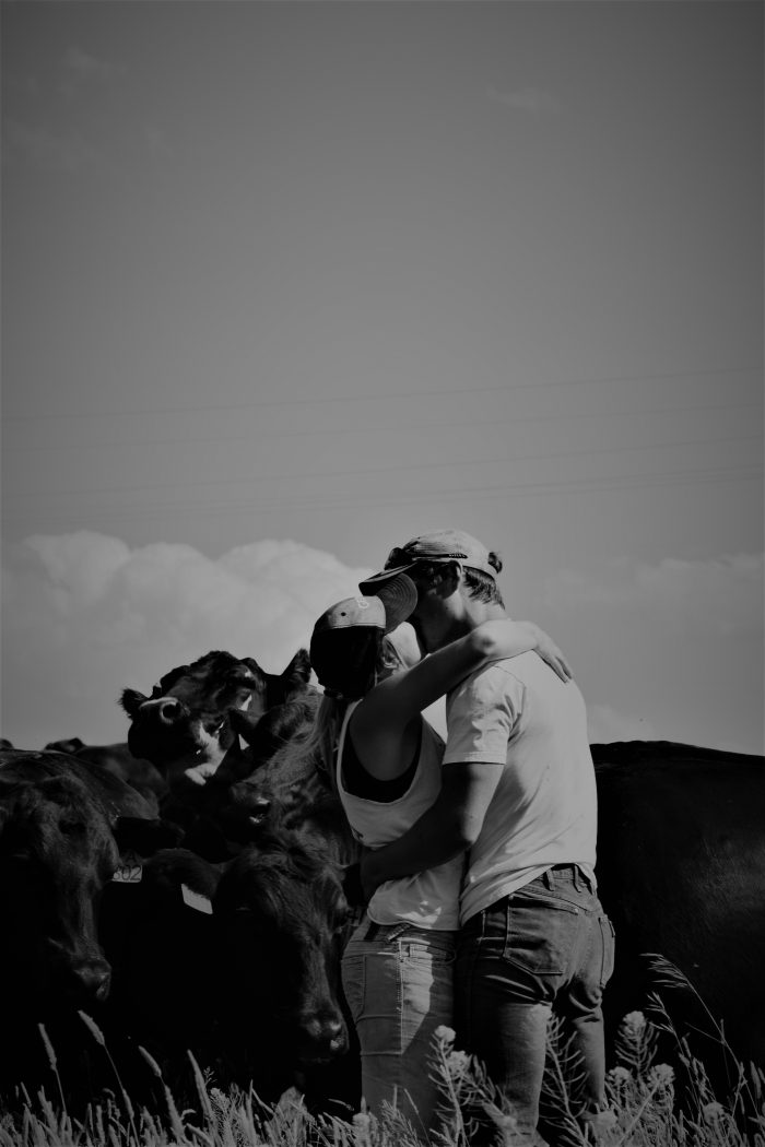 Marriage Proposal Ideas in In a pasture in Lewistown, Montana.
