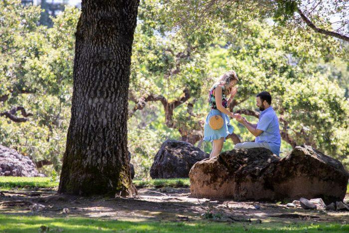 Proposal Ideas Napa, California
