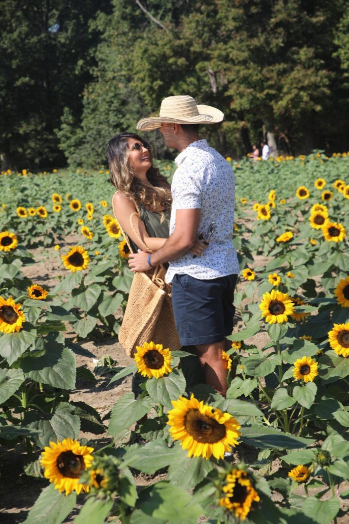 Wedding Proposal Ideas in In the middle of a sunflower field, a year after he took me there for the first time