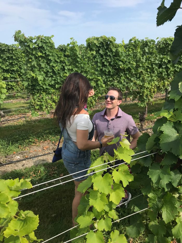 Where to Propose in Newport Vineyards