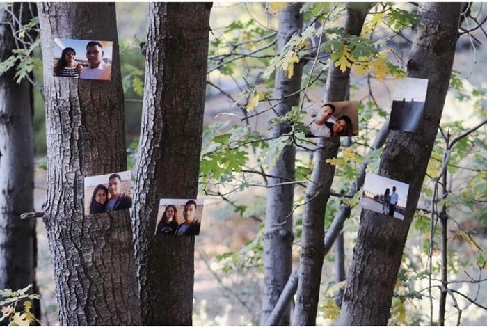 Engagement Proposal Ideas in Big bear