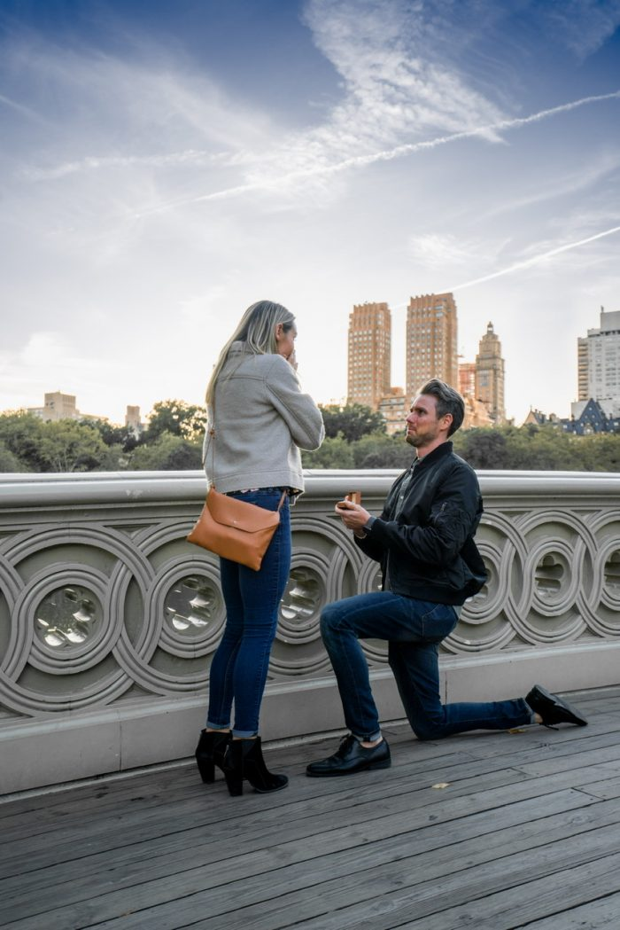 Danielle's Proposal in New York City