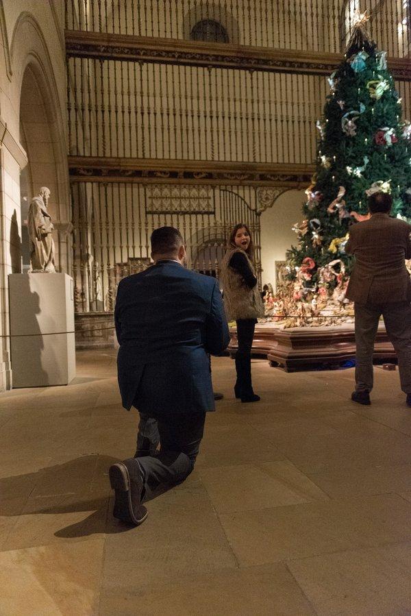 Marriage Proposal Ideas in Metropolitan Museum of Art