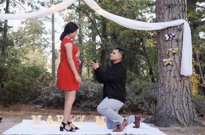 Julia's Proposal in Big bear