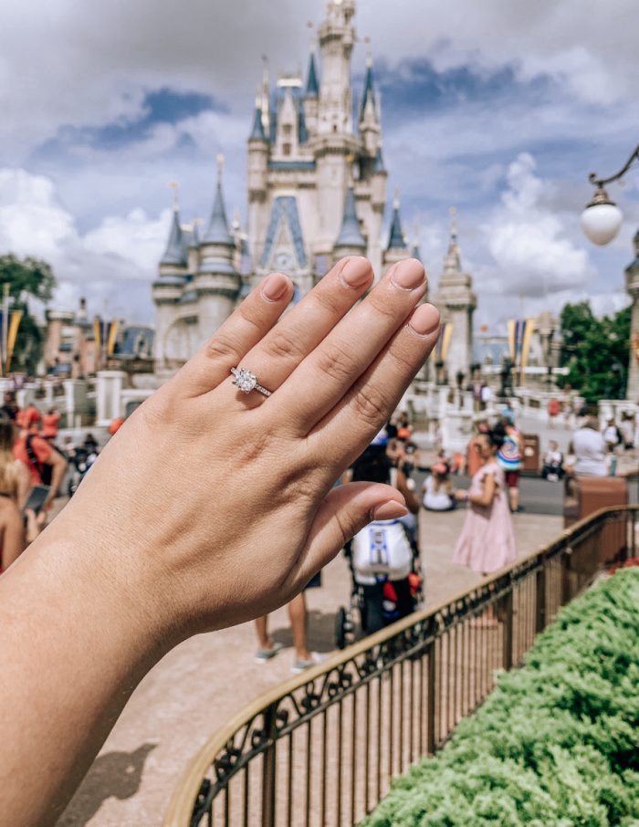 Brittany and Brad's Engagement in Magic Kingdom Disney World