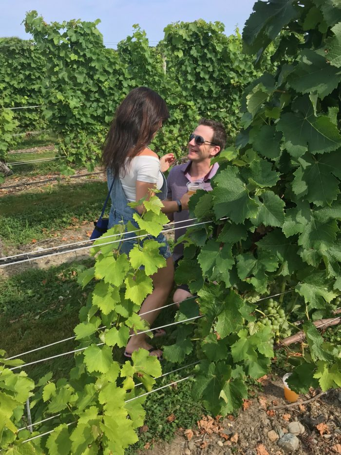 Jaimie's Proposal in Newport Vineyards