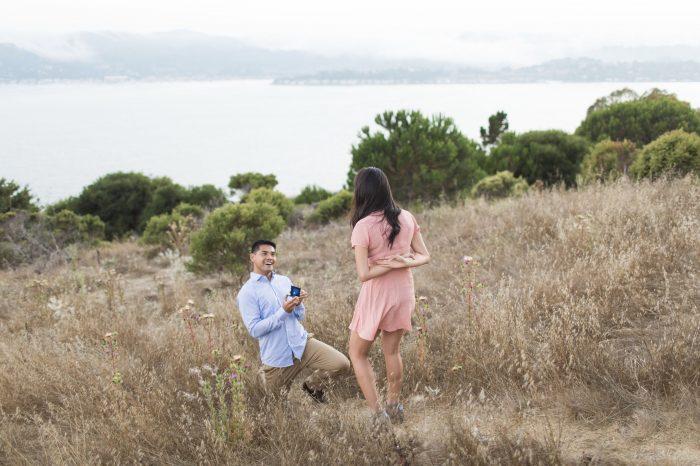 Engagement Proposal Ideas in Hippie Tree in Belvedere-Tiberon, California