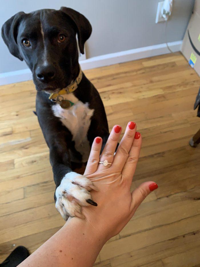 Brianne's Proposal in RBQ, Rockaway Beach