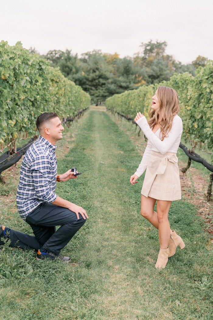 Engagement Proposal Ideas in Beneduce Vineyards