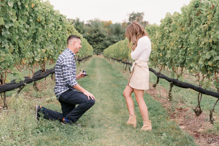 Where to Propose in Beneduce Vineyards
