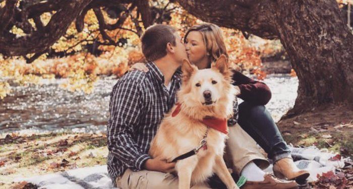 Wedding Proposal Ideas in Huntsville, ON