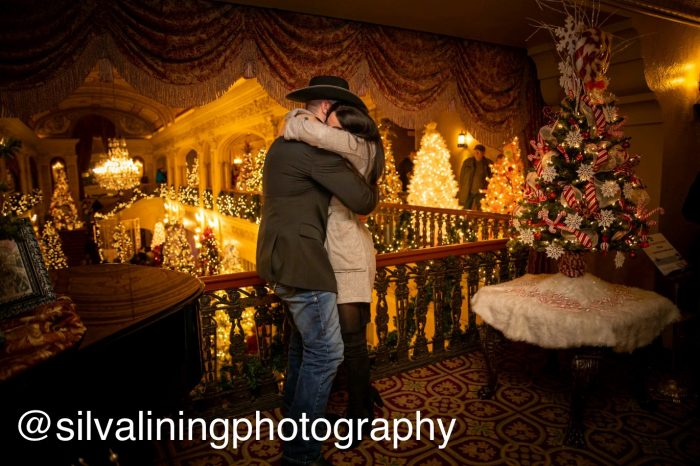 Where to Propose in The Embassy, Fort Wayne, In (Festival of Trees)