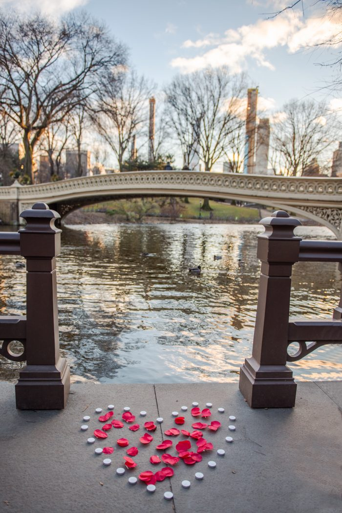 Marriage Proposal Ideas in Central Park in NYC