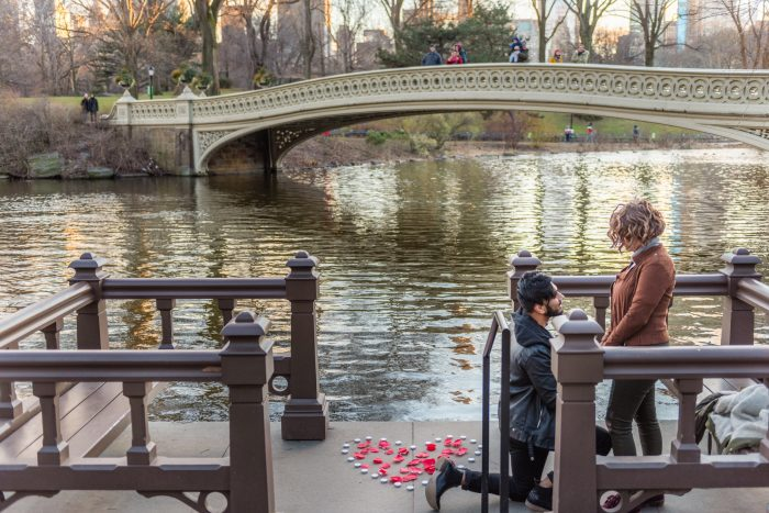 Where to Propose in Central Park in NYC