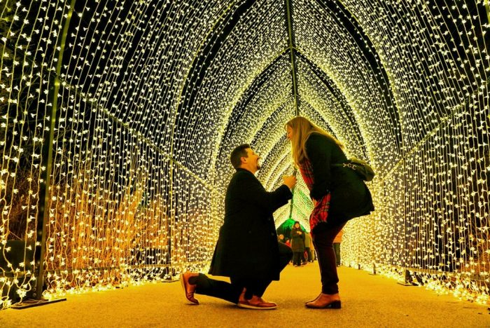 Where to Propose in Lightscape at the Chicago Botanic Garden