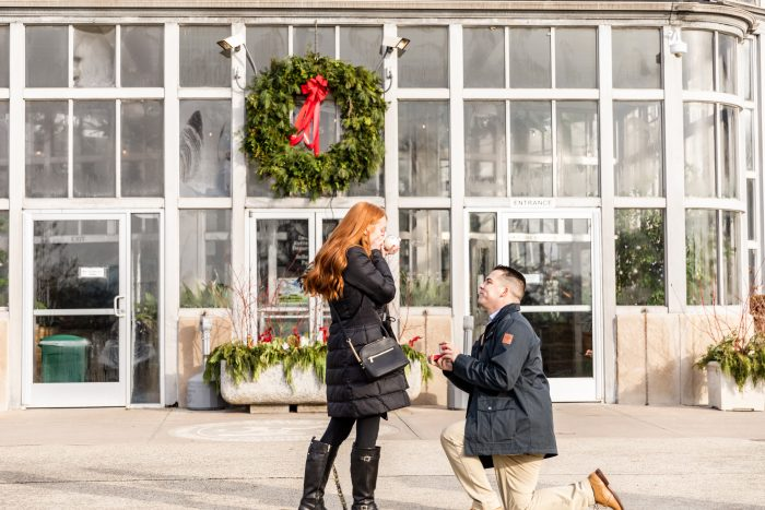 Where to Propose in Belle Isle, Detroit Michigan