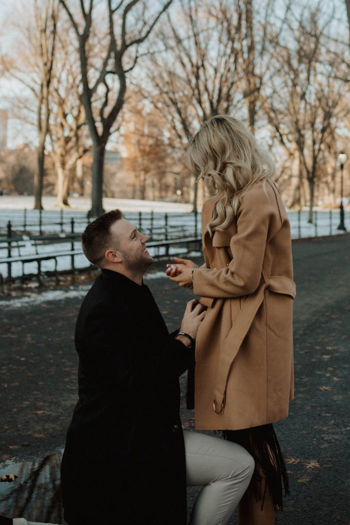Wedding Proposal Ideas in Central Park, New York