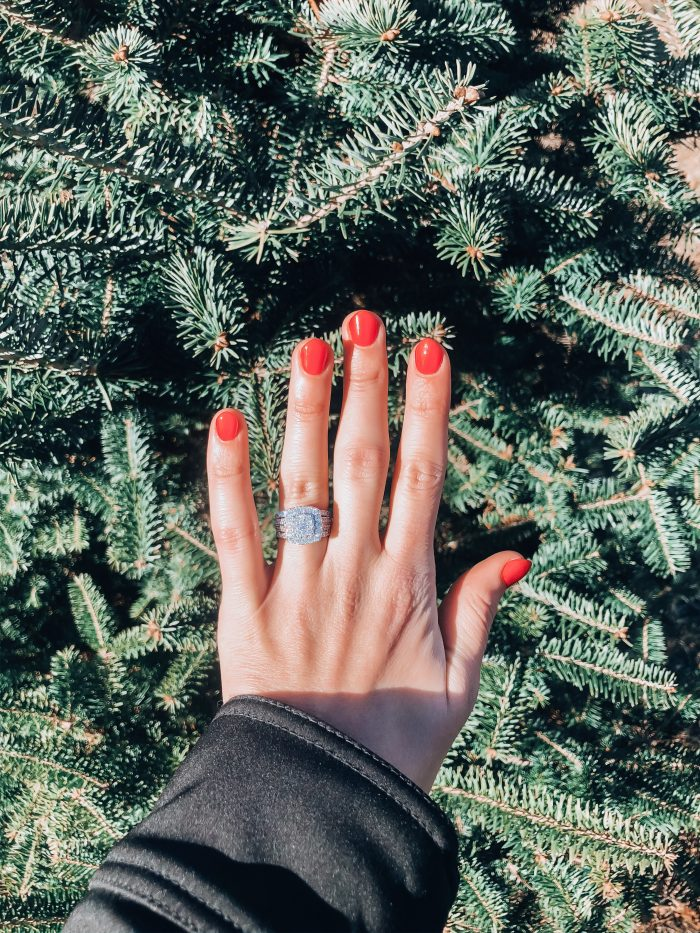 Taylor's Proposal in The Christmas tree farm my family goes to every year.