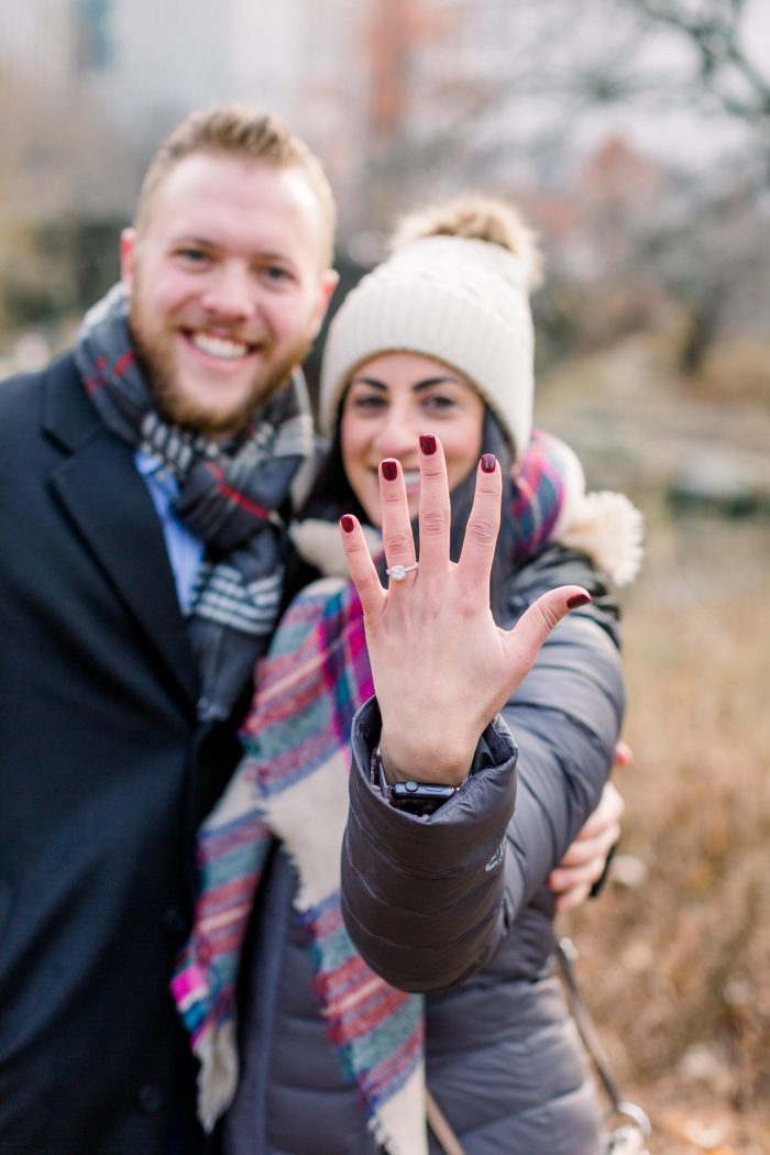 Engagement Proposal Ideas in Central Park, New York