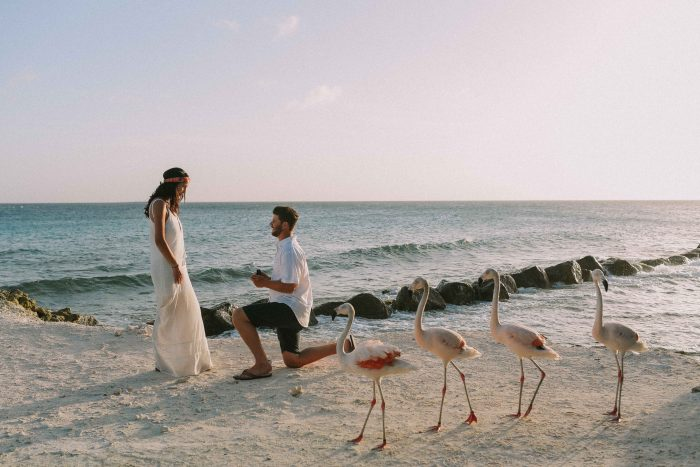 Engagement Proposal Ideas in Aruba, Renaissance Private Island