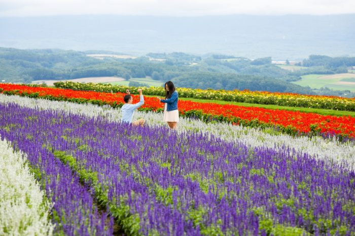 Where to Propose in Hokkaido, Japan