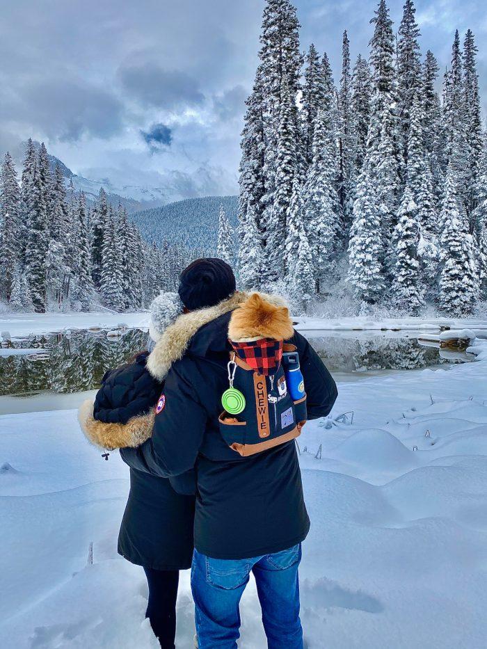 Marriage Proposal Ideas in Emerald Lake Lodge, Canada