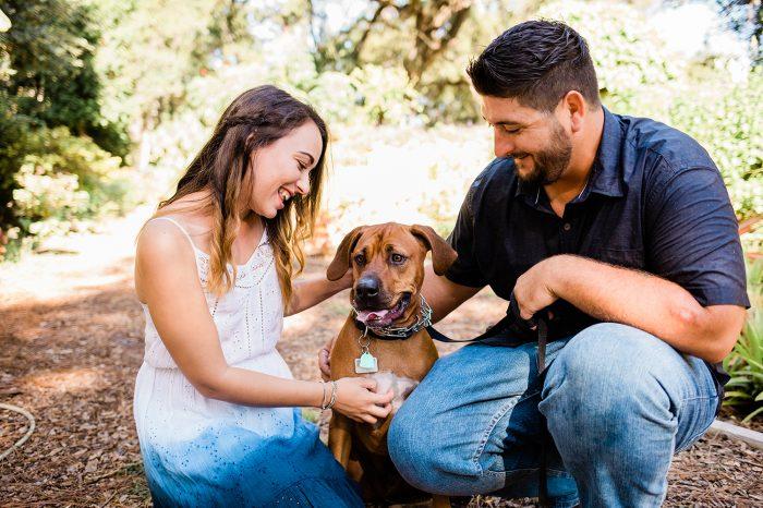 Wedding Proposal Ideas in New Smyrna Beach