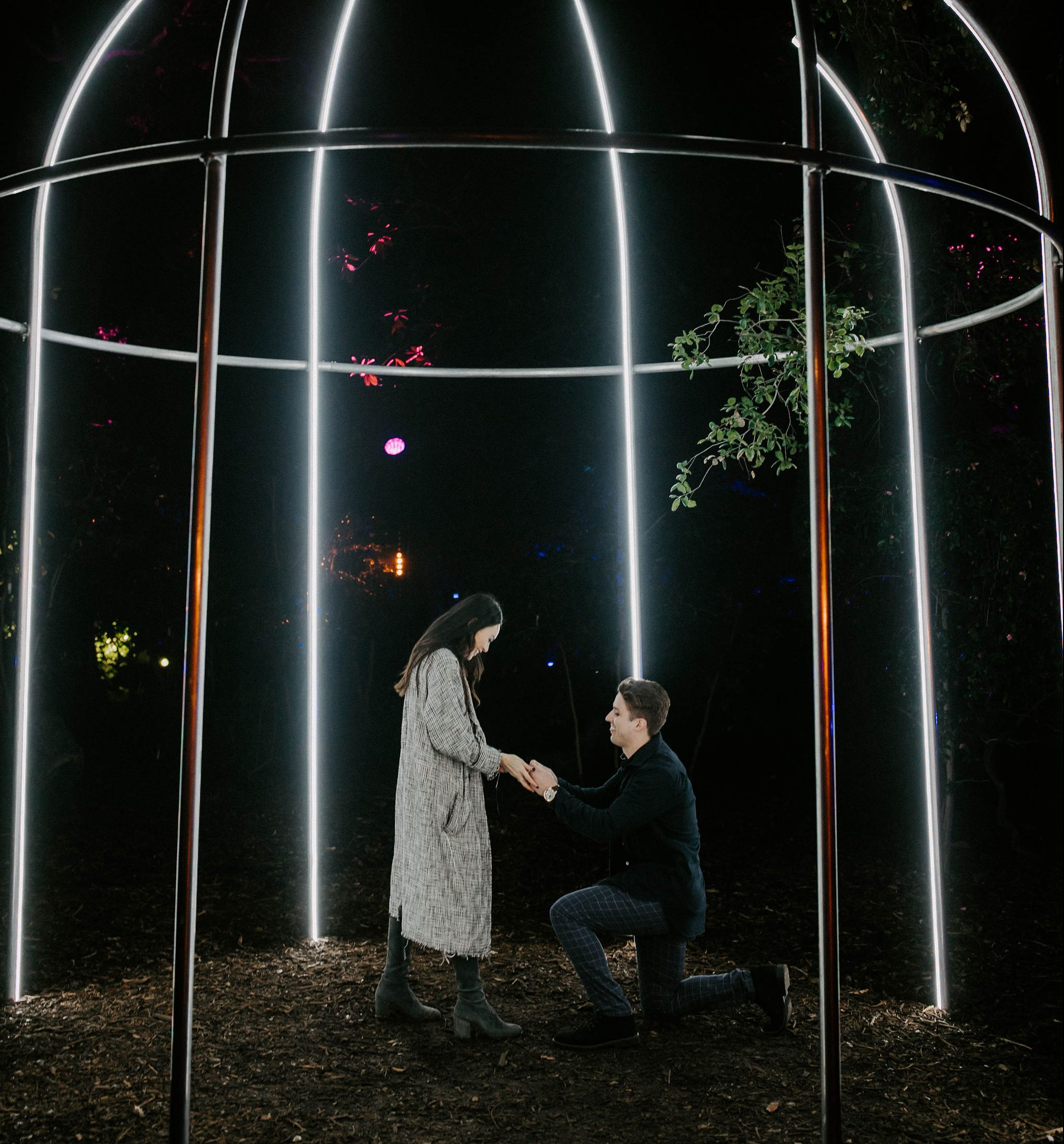 Proposal Ideas Enchanted Lights at Descanso Garden in LA