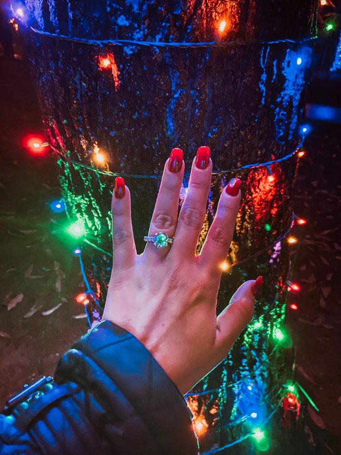Jamie's Proposal in Longwood Gardens in Kennett Square, PA